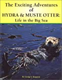 The Exciting Adventures of Hydra & Muste Otter: Life in the Big Sea