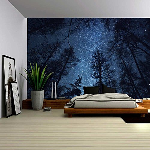 Wall26® - A Gazing View Up Into the Night Starry Sky Surrounded by Trees - Wall Mural, Removable Sticker, Home Decor - 100x144 inches