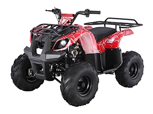 Atv-125cc-Fully-Automatic-with-Reverse-1-Year-Engine-Warranty