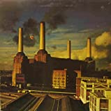 Pink Floyd - Animals - Mounted Poster