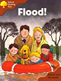Oxford Reading Tree: Stage 8: More Storybooks A: Flood!