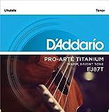 D'Addario Cordes en titane pour ukulele D'Addario EJ87T, Tenor