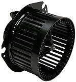 Delphi BM10013 Blower Motor and Fan