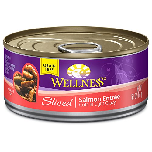 Wellness Grain Free Sliced Salmon Natural Wet Canned Cat Food, 5.5-Ounce Can (Pack of 24)