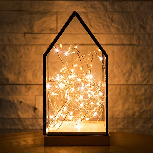 Kohree Micro 30 LEDs Super Bright Warm White Décor Rope Lights Battery Operated on 10 Ft Long Ultra Thin String Copper Wire For Seasonal Decorative Christmas, Holiday, Wedding, Parties With Timer Battery Box