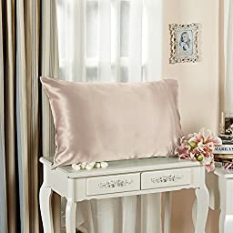 LILYSILK Silk Toddler Pillowcase 19 Momme Pure Mulberry Silk with Cotton Underside 1pc Apricot 13x18 Inch