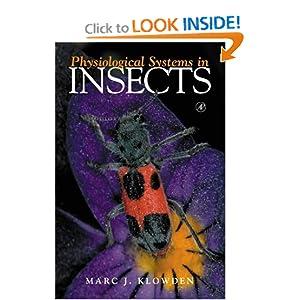 گیاهپزشکی از منظر حشرات