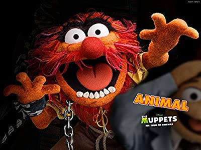 19x14 inch The Muppets Silk Poster FGSA-1F6