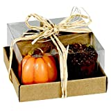 Harvest 4-Pack of Candles - Pumpkins and Acorns - 2 Inches x 2 Inches Each