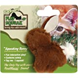 OurPets Play-N-Squeak Backyard Bunny Catnip Cat Toy