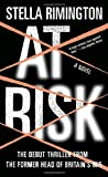 At Risk: A Novel