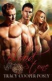 Blood Stone: A Vampire Menage Urban Fantasy Romance