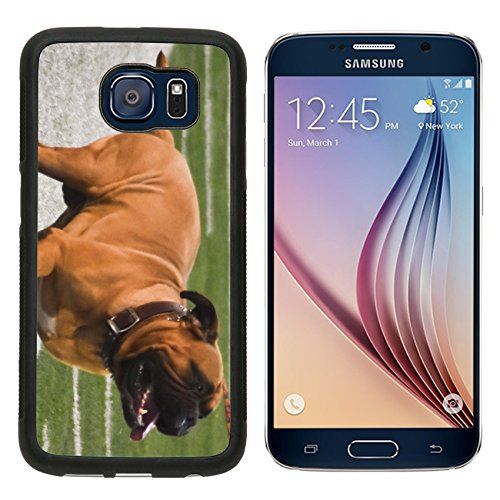 msd-premium-samsung-galaxy-s6-aluminum-backplate-bumper-snap-case-swagger-image-20393833230