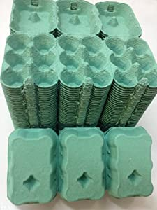 100 X 1/2 DOZEN EGG BOXES NEW (GREEN COLOUR)