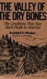 img - for The Valley of the Dry Bones: The Conditions That Face Black People in America Today book / textbook / text book