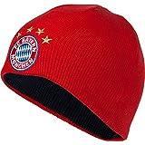 Wendemütze Logo rot+blau