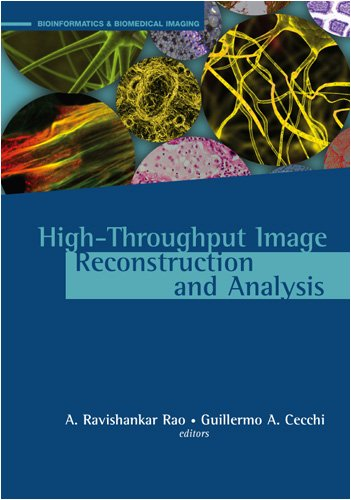High-Throughput Image Reconstruction And Analysis (Bioinformatics & Biomedical Imaging)