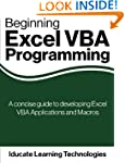 Beginning Excel VBA Programming: A co...