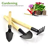 Small Gardening Tool Kit 3 Pieces(Trowel Cultivator Transplanter) Home Garden Lawn Potting Plant Care Equipment Rust Resistant Soft Touch Ergonomic Wooden Handle Design Perfect Gift for Garden Lovers (Wooden)