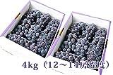 完熟ぶどうスチューベン4kg[12~14房程度] ランキングお取り寄せ
