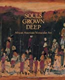 img - for Souls Grown Deep, Vol. 1: African American Vernacular Art of the South: The Tree Gave the Dove a Leaf book / textbook / text book