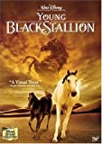 The Young Black Stallion packshot