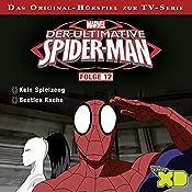 Der ultimative Spiderman 12 | Gabriele Bingenheimer