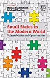 img - for Small States in the Modern World: Vulnerabilities and Opportunities book / textbook / text book