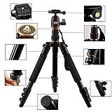 Professional Camera Tripod Portable NOSTON Monopod Magnesium Aluminium Adjustable Pro 60