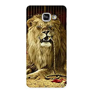 Special Dude Lion Multicolor Back Case Cover for Galaxy A7 2016