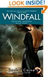 Windfall (The Weather Warden, Book 4)