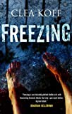 img - for Freezing (A Jayne and Steelie Mystery) by Koff, Clea(December 1, 2011) Hardcover book / textbook / text book