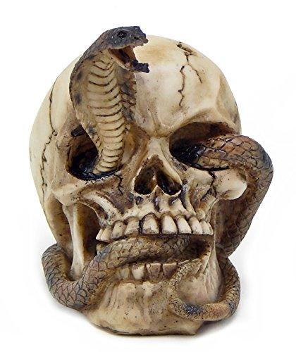 Skeleton Cobra Snake Habitat Skull Figurine Statue Sculpture Halloween (Skull Halloween Decoration)