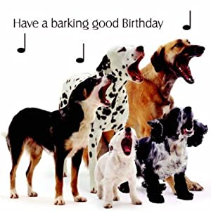 Free Online Video Birthday Cards Barking Dogs