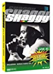 Shaggy - Live at Chiemsee Reggae Summ...