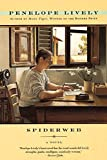 Spiderweb: A Novel