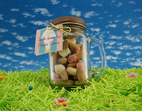 Weaver Nut Land of the Gummies Soft Serve Ice Cream Cones Summer Jar 10 oz (Ice Cream Cone Gummies compare prices)