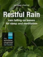 Restful Rain for Meditation and Sleep