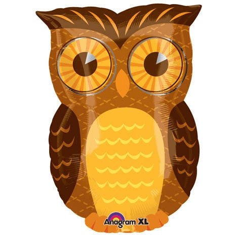 Owl party mylar balloon 18 inch (MULTI, 1)