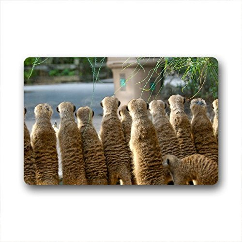 Too Amazing Custom High Quality meerkats Home Decor House Doormat 23.6
