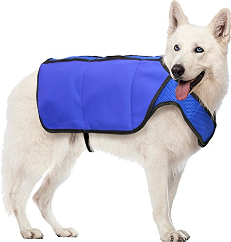 Hugs Pet Products Chilly Cooling Vest for Dogs, Medium, Blue