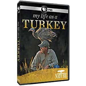Nature: My Life as a Turkey