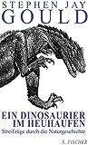 Ein Dinosaurier im Heuhaufen