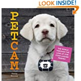 PetCam: The World Through the Lens of Our Four-Legged Friends