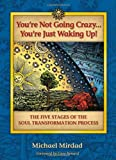 You're Not Going Crazy...You're Just Waking Up! The Five Stages of Soul Transformation Process