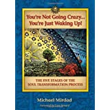 You're Not Going Crazy... You're Just Waking Up!: The Five Stages of the Soul Transformation Processby Michael Mirdad