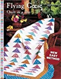 Flying Geese Quilt in a Day (1891776053) by Burns, Eleanor