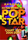 So You Wanna Be A Pop Star Chart Hits 2004 2005