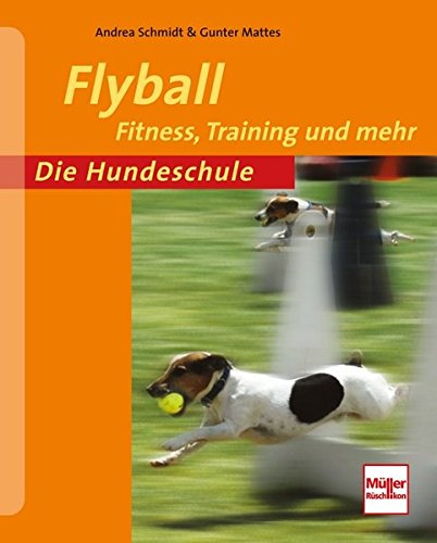 Flyball PDF