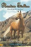 Wild Honey (Phantom Stallion #22)